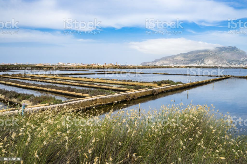 Landscape of Saline di Trapani e Paceco nature reserve with Mount Erice on the background, Sicily, Italy Landscape of Saline di Trapani e Paceco nature reserve with Mount Erice on the background, Sicily, Italy Environment Stock Photo
