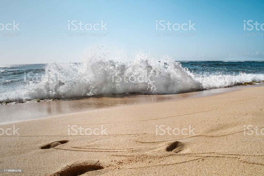Landscape of sea on a sunny day in Hawaii, summer vacation concept stock photo