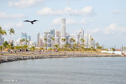 Panama City / Panama - March 25, 2016: landscape of skyscrapers in financial center of Panama and people walking along the promenade with sea birds flying