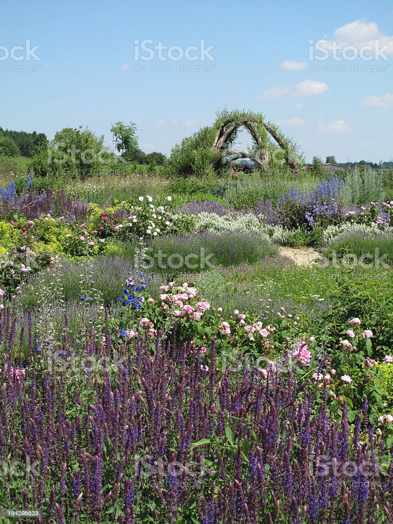 Landscape of summer in an herb garden royalty-free stock photo