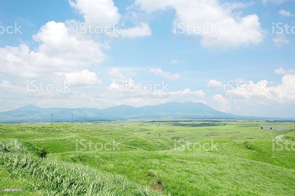 Landscape of Summer stock photo