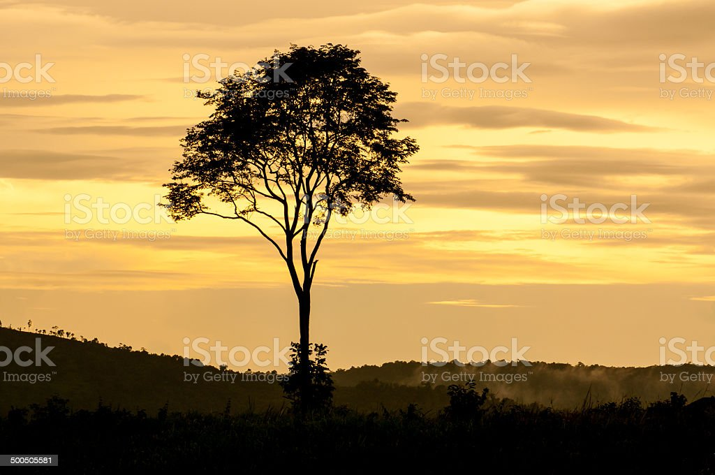Landscape of sunset with cloudy orange sky royalty-free stock photo