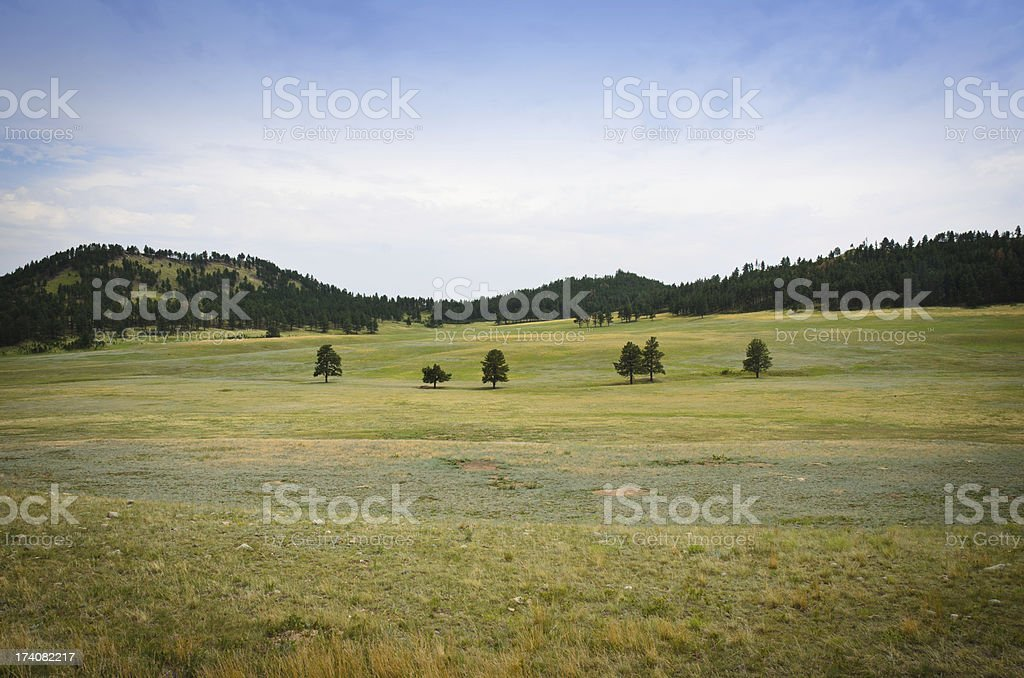 Landscape of the Black Hills stock photo