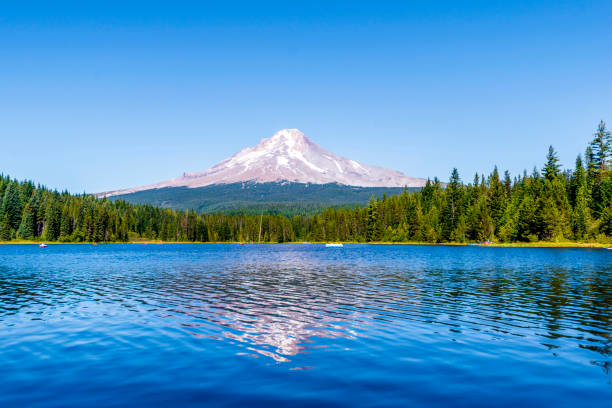 Landscape of the picturesque Trillium Lake surrounded by forest overlooking Mount Hood and the reflection of snowy mountain in the clear water of the lake Landscape of the picturesque Trillium Lake surrounded by forest overlooking Mount Hood and the reflection of snowy mountain in the clear water of the lake where people like to rest mt hood stock pictures, royalty-free photos & images