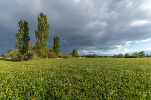 paysage de la plaine dans la campagne française - orage en alsace photos et images de collection