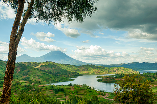 View into the mountain range of the Virunga Volcanoes, a line of 8 volcanoes in the area of the border-triangle between Rwanda, Uganda and the DR Congo. \n\nLeft: Mount Muhabura (4127m)\nRight: Mount Gahinga (3474 m)\nThe lake in the right part of the picture is Lake Ruhonda.\n\nThe Virunga Volcanoes are home of the critically endangered mountain gorilla (gorilla beringei beringei), listed on the IUCN Red List of Endangered Species due to habitat loss, poaching, disease, and war.