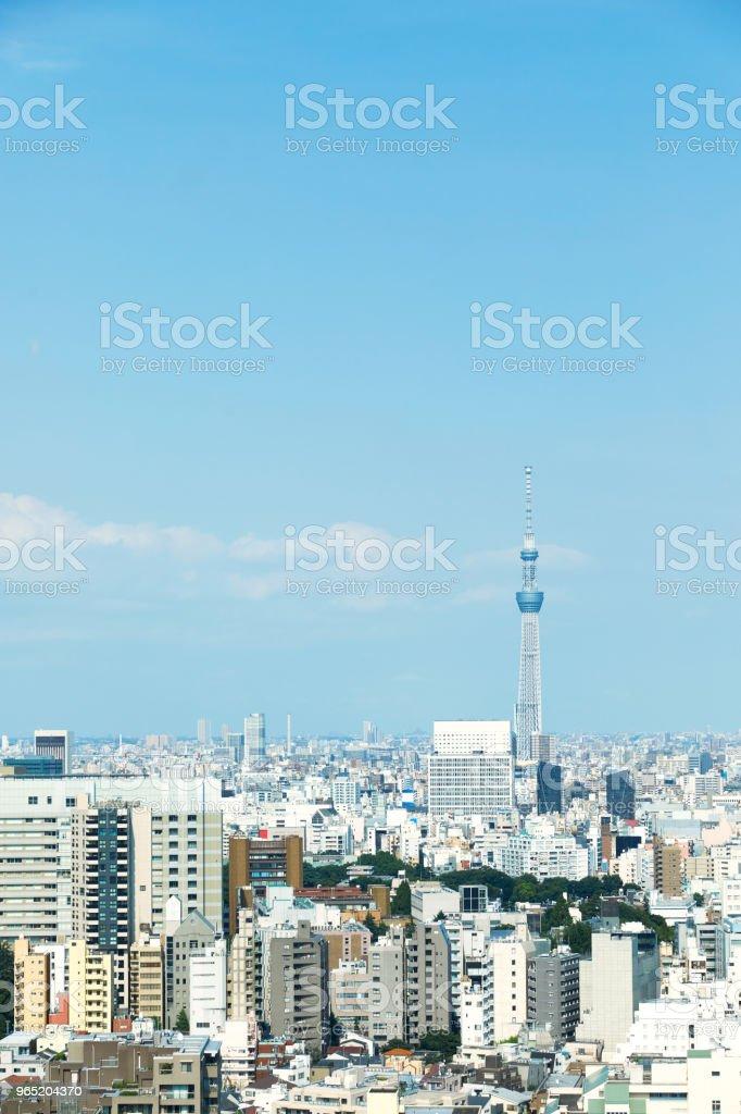 landscape of Tokyo city royalty-free stock photo