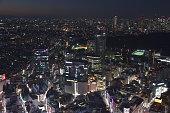 istock Landscape of Tokyo in Japan 1198598077