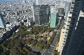 istock Landscape of Tokyo in Japan 1198598081