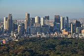 istock Landscape of Tokyo in Japan 1198598084