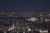 istock Landscape of Tokyo in Japan 1198598115