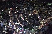 istock Landscape of Tokyo in Japan 1198598138