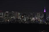 istock Landscape of Tokyo in Japan 1198598141