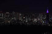 istock Landscape of Tokyo in Japan 1198844373