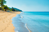 Landscape of tropical island - long sand beach with footprints, palm trees and blue sea