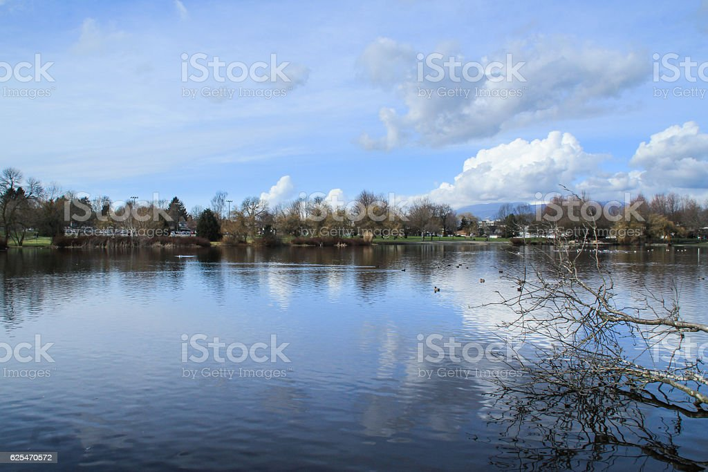 landscape of trout lake in Vancouver, Canada stock photo