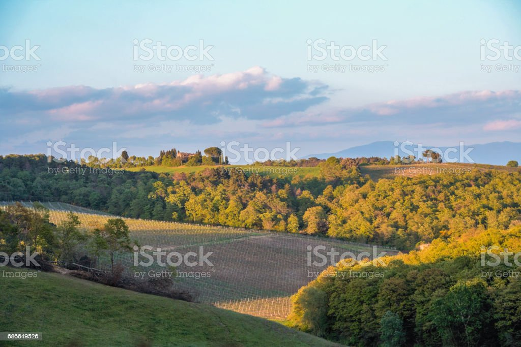 Landscape of tuscan countryside in spring Lizenzfreies stock-foto