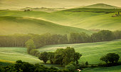 Typical landscape from Tuscany with green hills