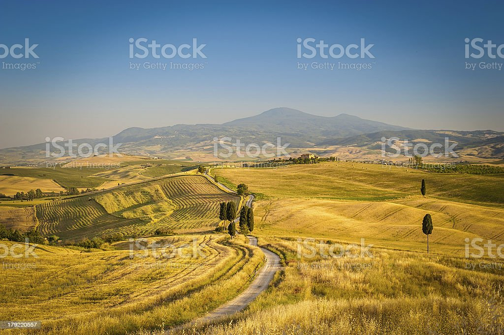 Landscape of Val d'Orcia royalty-free stock photo