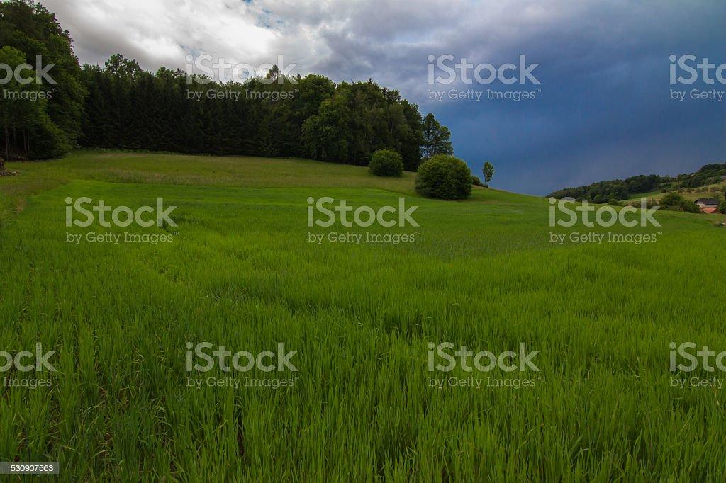 Landschaft des valley – Foto