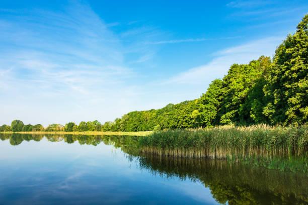 에 potzlow, 독일에서 호수 풍경 - 브란덴부르크 주 뉴스 사진 이미지
