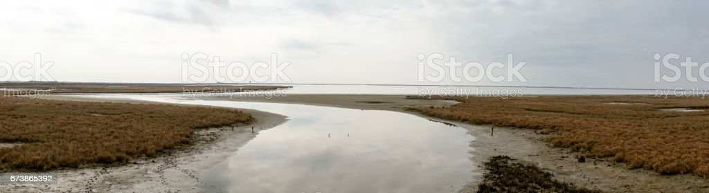 Nehri Delta Meriç, Yunanistan, panoramik manzara royalty-free stock photo