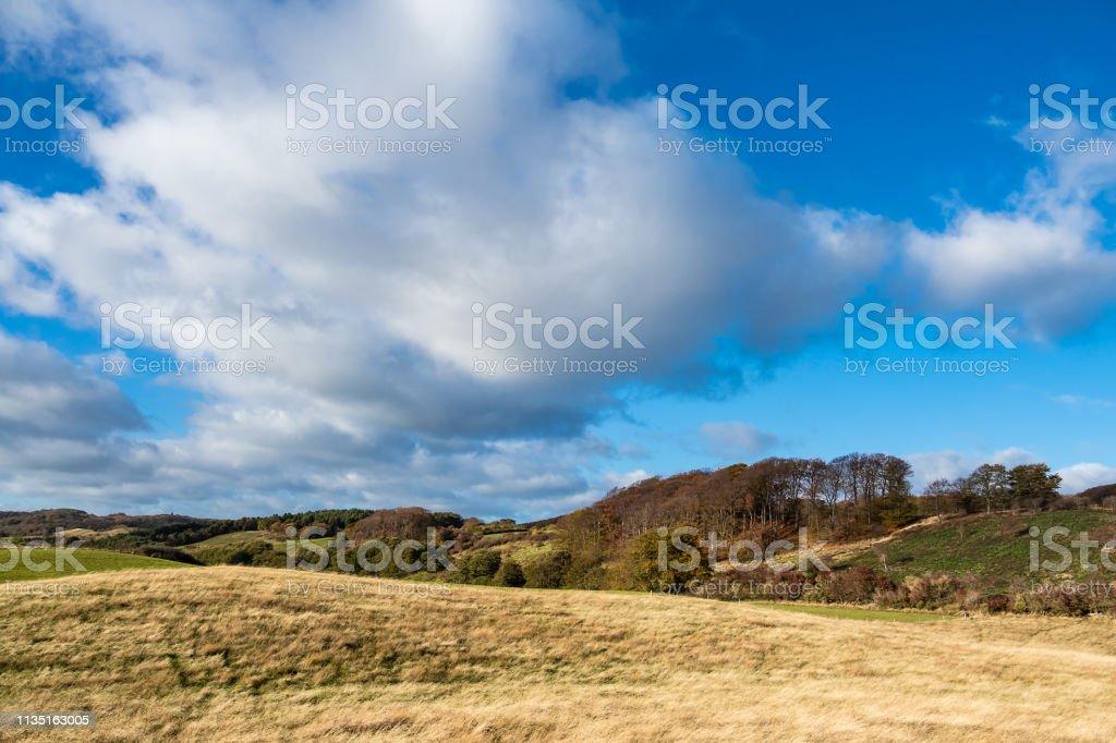 Landschaft auf der Insel Moen in Dänemark – Foto