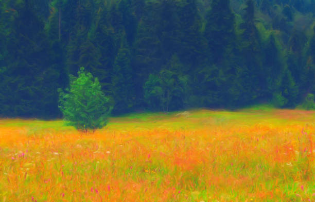 landscape painting showing spring meadow full of flowers in front of pine forest - impressionist painting stock photos and pictures