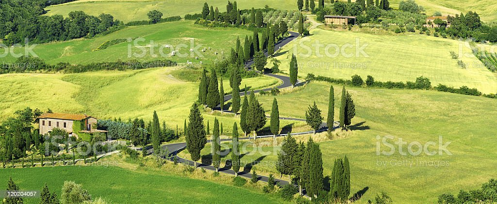 Landscape panorama - Road among fields royalty-free stock photo