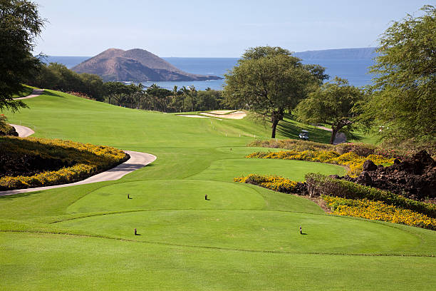 Landscape photo of a golf course stock photo