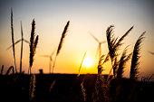 Landscape photo Wind turbines silhouette at sunset