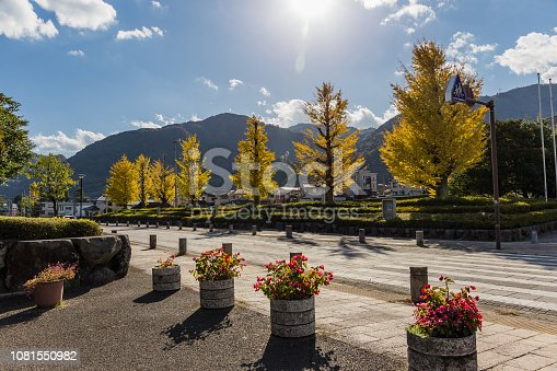 Trees with yellow leaves, blue cloudy sky and mountains, Beppu in Japan in the autumn season.