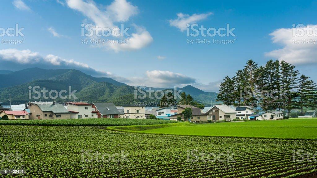 Fotos de paisaje - foto de stock