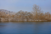 the winter scenery by the river