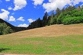 Landschaft im Schwarzwald