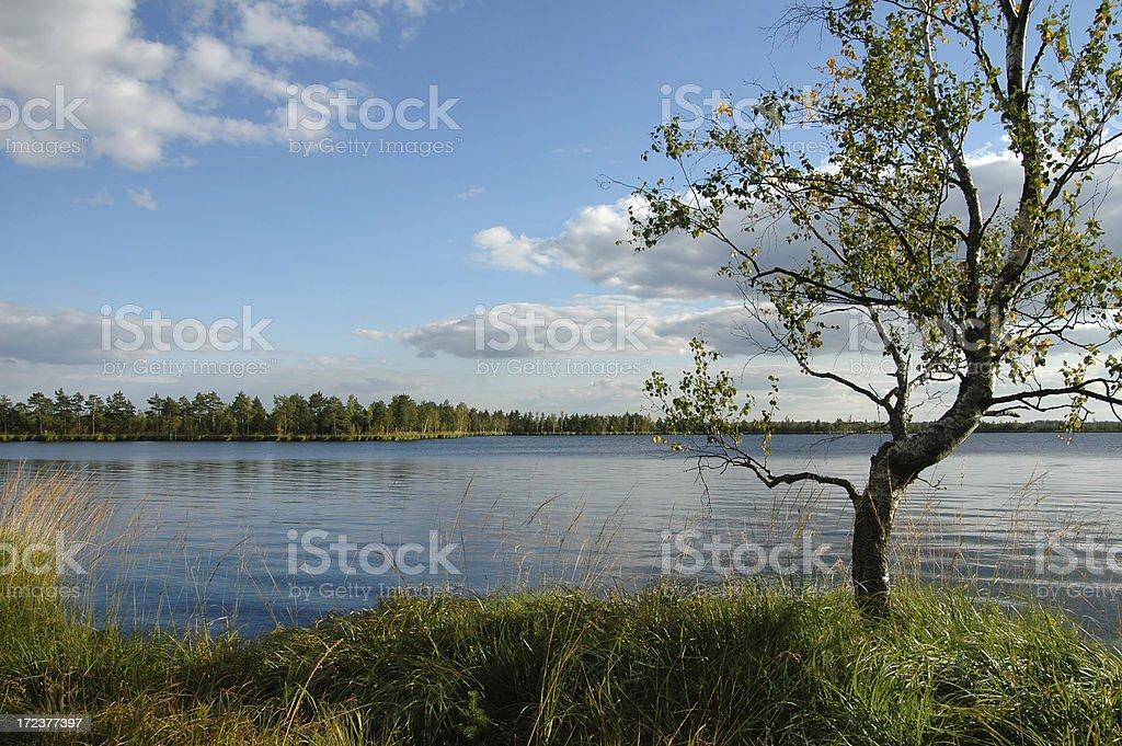 landscape royalty-free stock photo