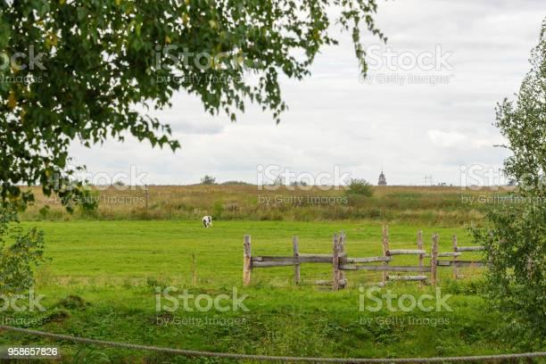 素朴 な 木製 の 柵