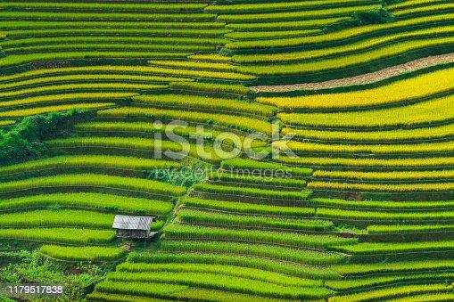 Landscape rice fields on terraced of Mu Cang Chai, YenBai, Vietnam.
