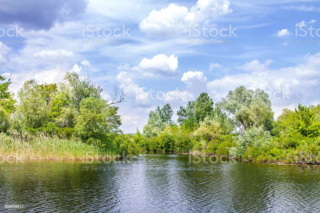 landscape river Dnieper marshes and Kherson stock photo
