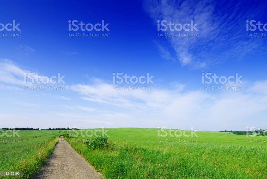 Landscape - Rural path, fields and blue sky royalty-free stock photo
