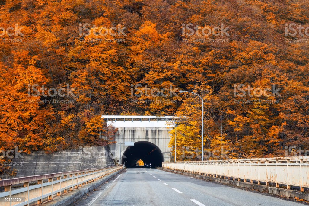 Landscape scene of Autumn season with car tunnel on the road in tohoku, japan, landscape and transportation concept stock photo