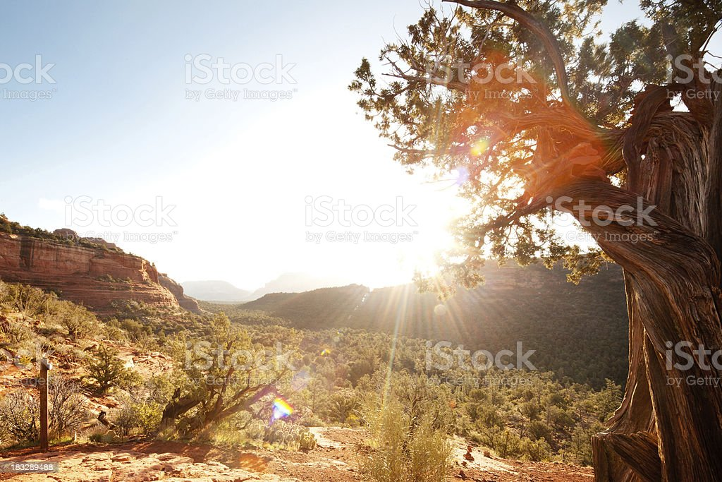 Landscape scene of red rock mountains and desert with sunlight stock photo
