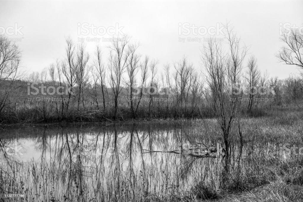landscape scenery in North Texas monochrome stock photo