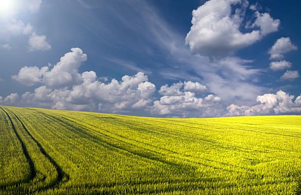 landschaft – siehe beschreibung - scyther5 stock-fotos und bilder