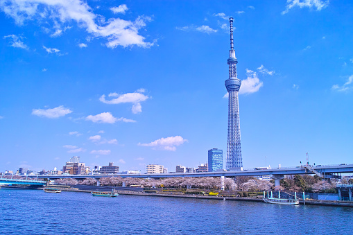 Landscape seen from the embankment of the Sumida River