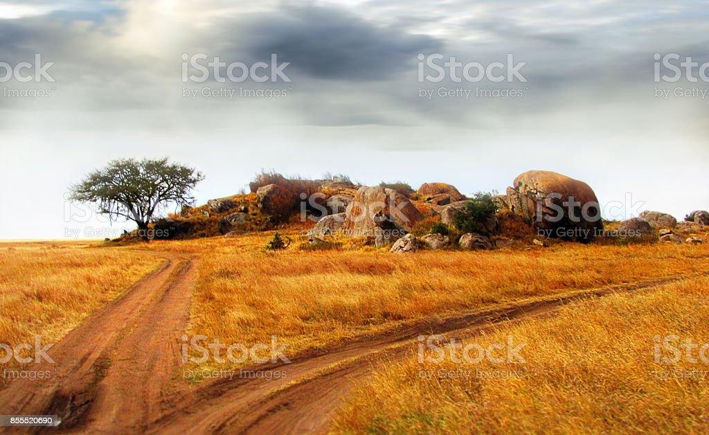 Chemin de terre paysage Tanzanie Serengeti éperon rocheux arbre herbe nuages soleil - Photo