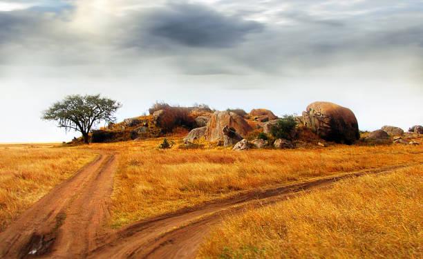 Landscape Serengeti Tanzania rocky outcrop tree  grass dirt road clouds sun stock photo