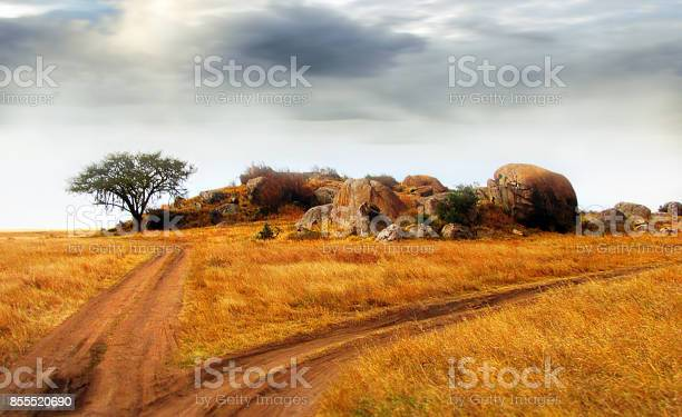 Landscape Serengeti Tanzania rocky outcrop tree  grass dirt road clouds sun