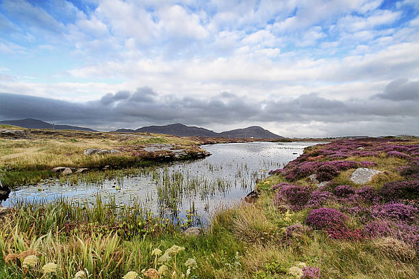 Landscape shot of moorland near Daliburgh, South Uist Moorland near Daliburgh in South Uist, The Outer Hebrides moor stock pictures, royalty-free photos & images