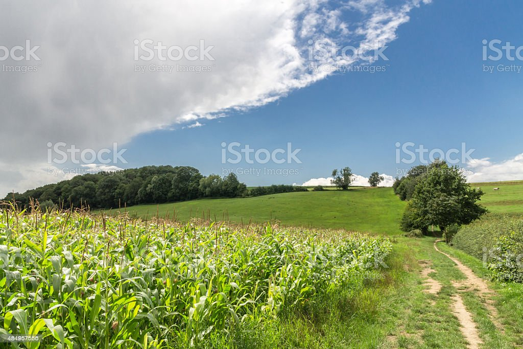 Landschaft South Limburg, Niederlande. Sonnigen Tag mit rainclouds. – Foto